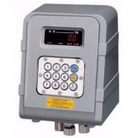 Весовой индикатор EXP-2000A